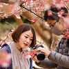 A couple checks their images at Shinjuku Gyoen National Garden