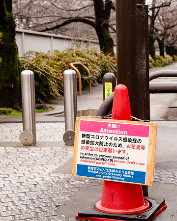 """No Hanami"" sign.  Kandagawa River, Okubo."