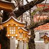 Hanazono-Jinja Shrine.  Shinjuku