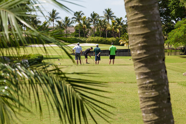 LAAIA Golf Tournaments