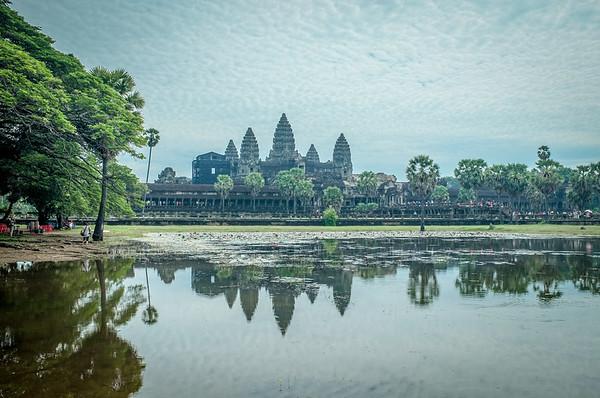 Lotus Pool Angkor Wat