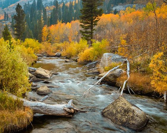 Bishop Creek 4