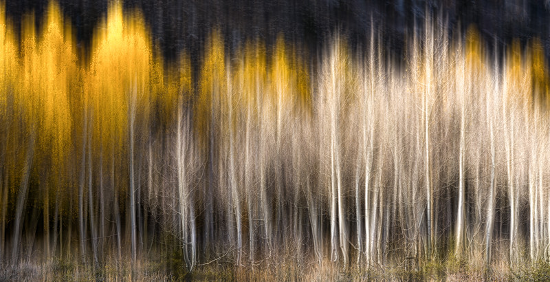 Aspen Apparitions
