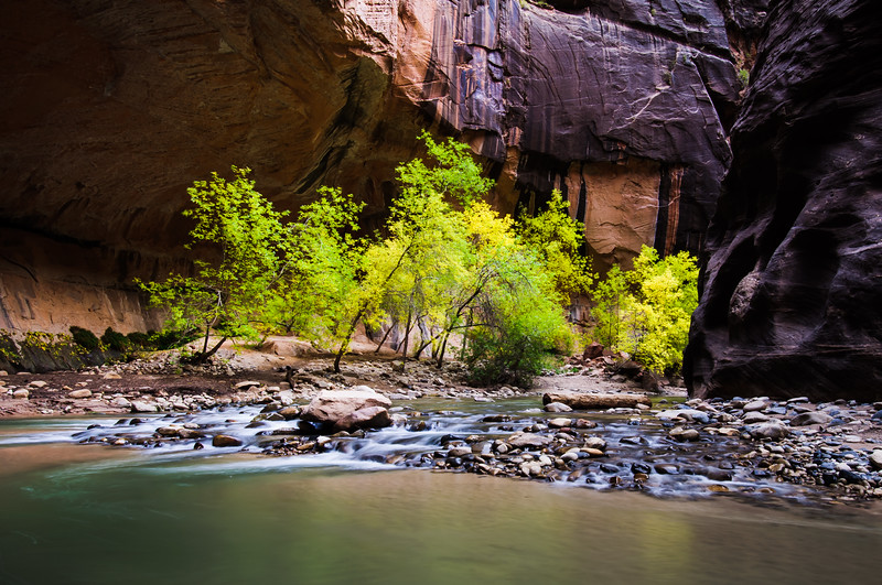 Life in the Narrows