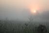 Sunrise over the Prairie