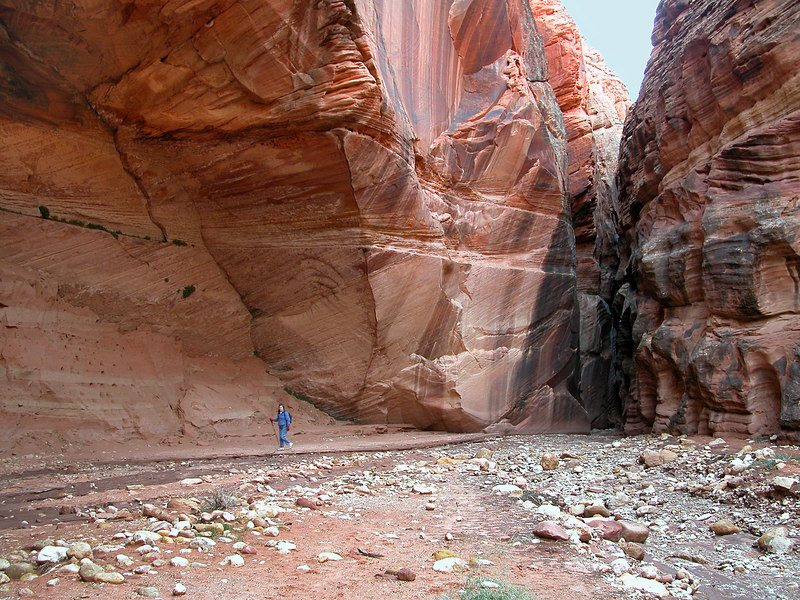 Massive walls carved by the Paria River through the Buckskin Gulch in Utah. Notice the size in relation to Donna. Utah.
