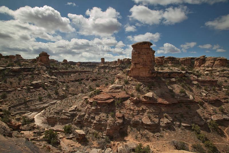In Canyonlands National Park, Needles district, an eroded landscape. Utah April 2010.