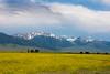 Madison Range, Montana. July 8, 2011