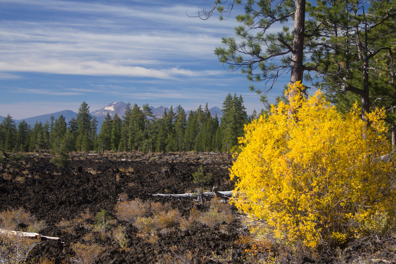 Three Sisters, Mount Bachelor and Broken Top from Lava Cast Forest between Bend and La Pine, Oregon. Fall Colors. Foreground is recent lava flow (within the last 7000 years)