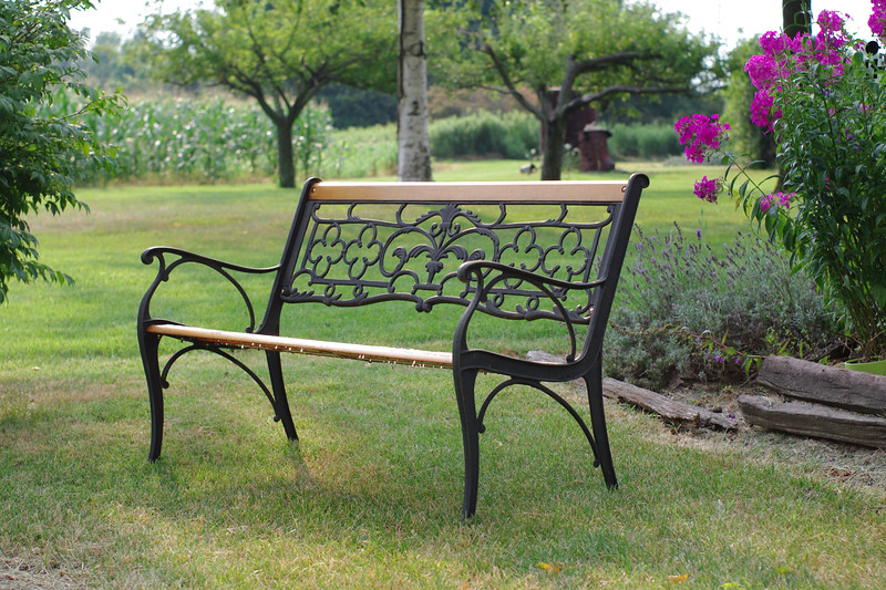 Beautiful bench in a summer garden.
