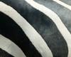 Black and White Designs of Nature in the Zebra.