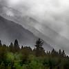 East Centennial Mountains Fog