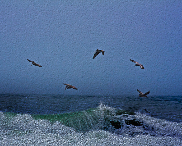 """My latest """"oil painting"""". Pelicans and Waves....."""