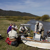 Federal and MT State fisheries biologists processing live caught Arctic Graylings for a project to recover the Arctic Grayling population in the Red Rock River area, MT. May 16, 2012