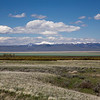 Upper Red Rock Lakes and Snowcrest Range. Lake is green due to shallow depth and mixing from wind.  May 24, 2013 Red Rock Lakes National Wildlife Refuge, Montana.