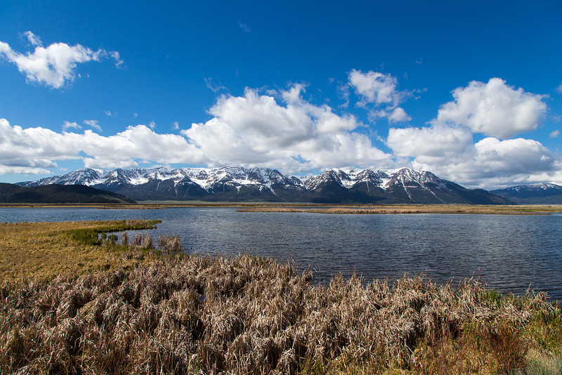 View of Centennial Mountains from Widgeon Pond. May 24, 2013 Red Rock Lakes National Wildlife Refuge, Montana.