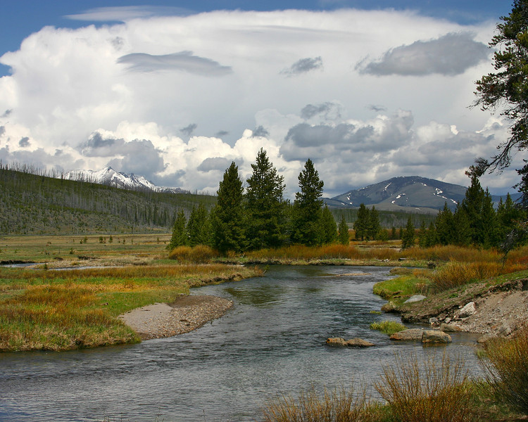 This beautiful little creek is called Winter Creek, and it resides in what is called Willow Park, in northeast Yellowstone National Park.  May 2004.