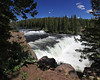 Upper Cave Falls on Fall River, Yellowstone Natl Park (west side). July 2008