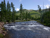 Little rapids on the Gibbon River, just above Gibbon Falls in Yellowstone National Park. August 2008