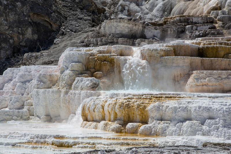 Palette Springs