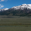 Madison River, Madison Range and Driftwaters Resort.