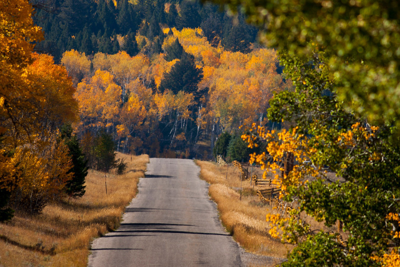 Red Rock Road looking west in Sep 2012. Fall Colors.