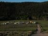 RedRock RV Park 2003