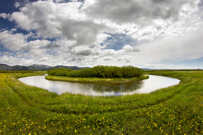 Henry's Fork of Snake River in Flat Ranch, Island Park, ID
