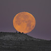 Super Moon over Saint Anthony Sand Dunes