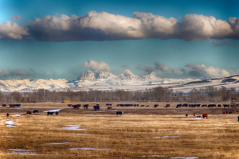 Tetons from West
