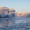 Frosted Trees along Henry's Fork Snake River