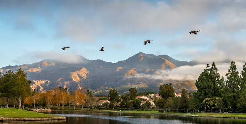 Morning Flight at Lago Santa Margarita