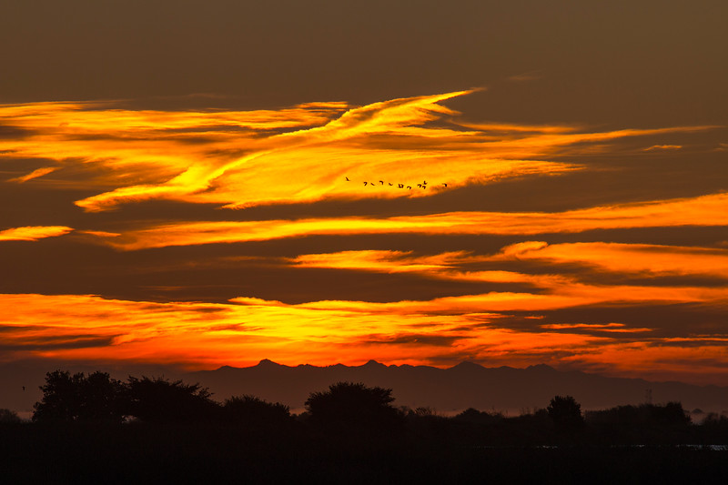 Beautiful skies at sunrise over the Sacramento Delta, CA