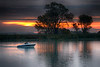 Fishing Boat and Tree and Mokelumne River at Sunrise. Isleton