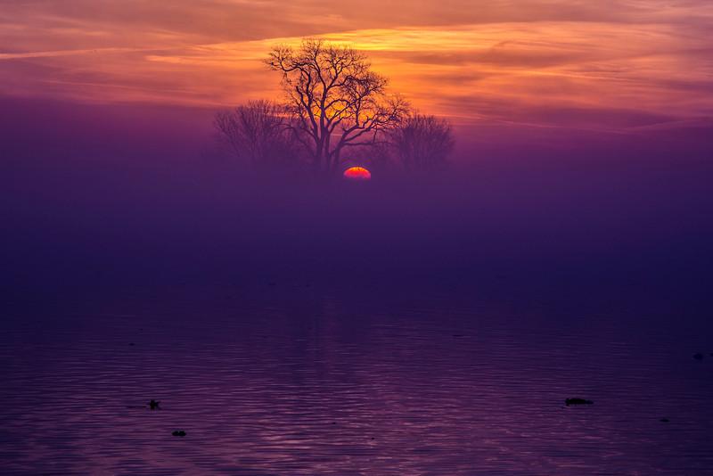 Sunrise on the Mokelumne River in the Sacramento Delta