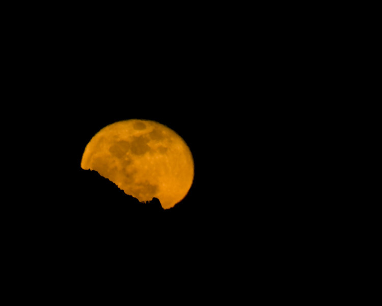 Moonrise over Palm Springs, Jan 11, 2009. Atmosphere creates a fuzzy moon. (at about 5 degree above horizon here) The color is realistic. It was a burnt orange.