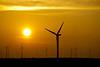 Windmills are silhouetted behind rising sun at Wind farm near Rio Vista, California, December 2011
