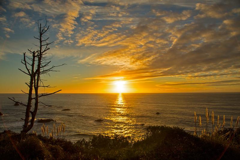 Partick's Point Sunset