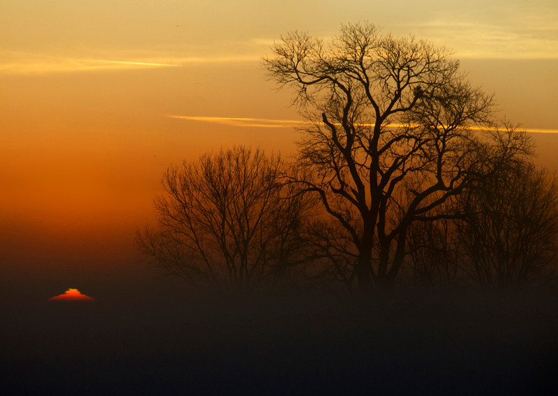 Sunrise over the lower Mokelumne River, near Isleton, California in the Sacramento Delta (above San Francisco bay). This sun appears as a pyramid, probably due to a temperature inversion (it was 37F outside), or the heavy fog that it was shining through.<br /> Jan 5, 2012.