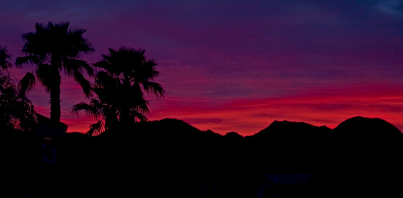 Sunrise and palm trees over the North Gila Mountains near Yuma, Arizona. March 2010. Reds, and blues.