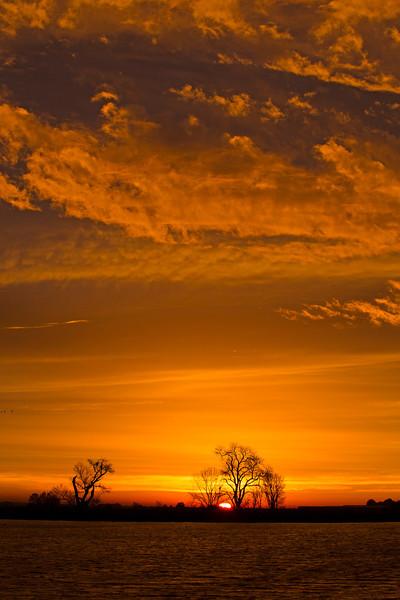 Beautiful sky and sunrise along the  lower Mokelumne River at Sunrise in the Sacramento River Delta region, near Isleton, CA Dec 2012