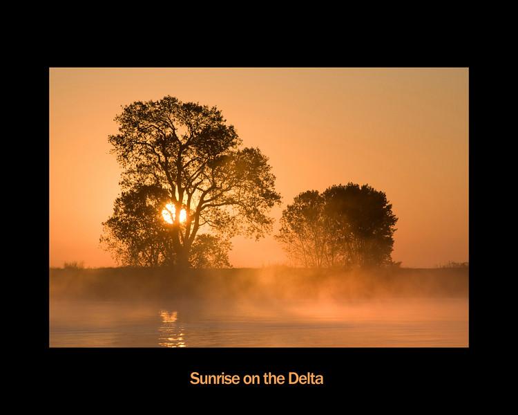 Framed photo. Two trees at sunrise on the banks of the lower Mokelumne River in the Sacramento River Delta region, near Isleton, CA.