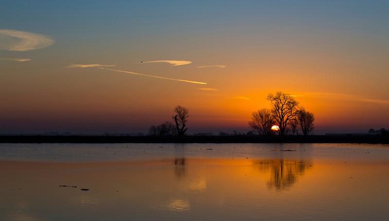 Sunrise and tree on the lower Mokelumne River.