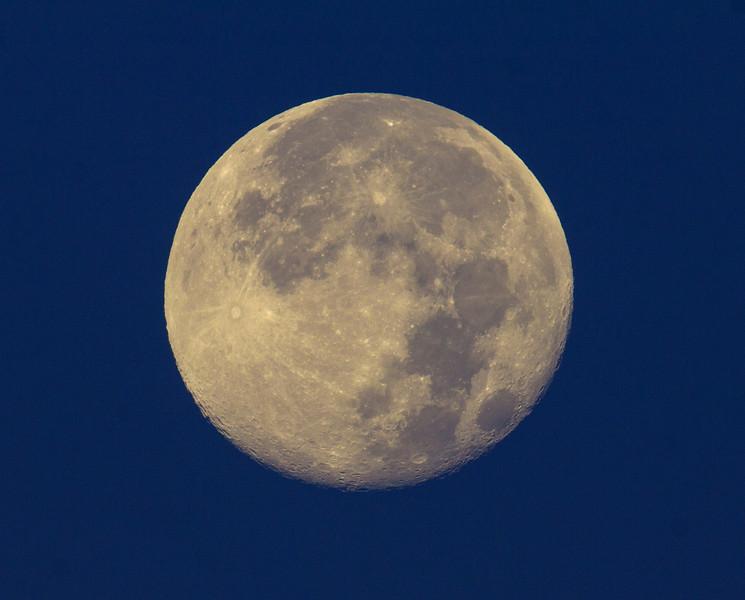 Blue Moon near moonset at RedRock RV Park in Island Park, Idaho. Aug 2013