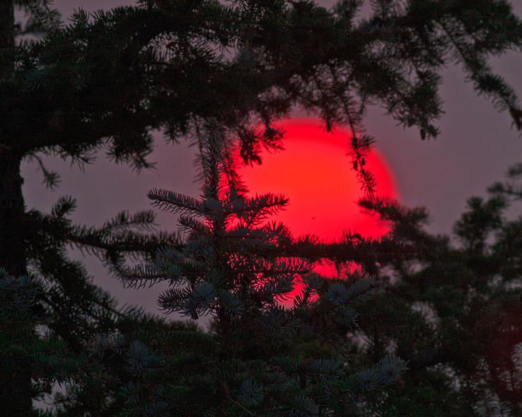 Sun peeking through trees and smoke at RedRock RV Park, Island Park, Idaho, Aug 25, 2012.