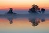 Trees and Mokelumne River at Sunrise. Isleton Reflections
