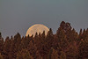 Moonset in the Cenntenial Mountains