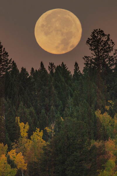 Moonset over Continental Divide