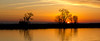 The banks of the lower Mokelumne River in the Sacramento River Delta region, near Isleton, CA. December 6, 2011.