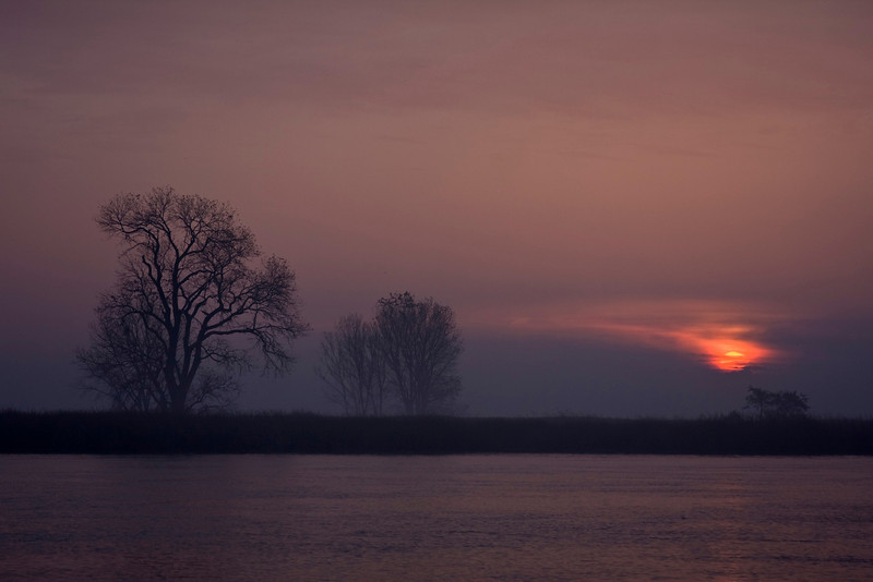 Purple cast from sunrise over the lower Mokelumne River River on the Sacramento Delta near Isleton, California. December 15, 2009